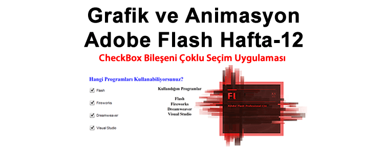 Grafik ve Animasyon Adobe Flash Hafta-12