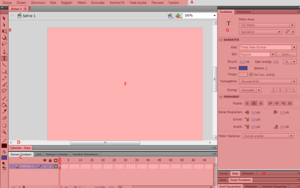 Adobe Flash Arayüzü