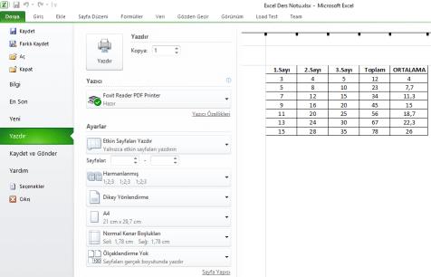 Excel Yazdır