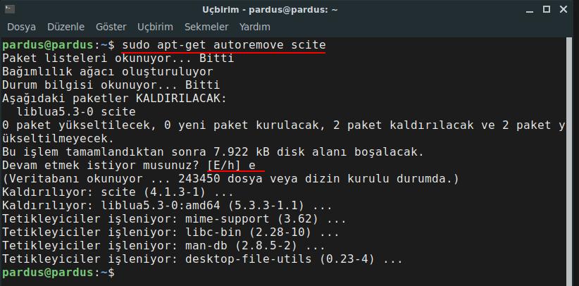 Scite Text Editörünün APT aracıyla kaldırılması