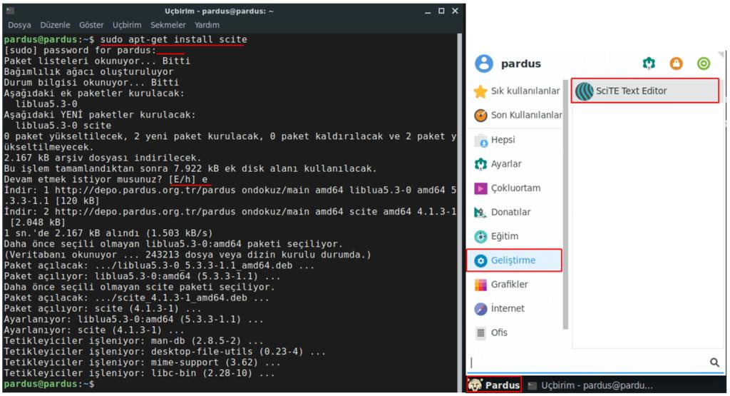 Scite Text Editörünün APT aracıyla yüklenmesi